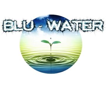 Blu Water Metering Solutions - WC